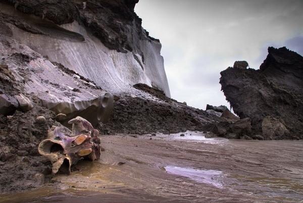 Победитель в номинации «Фоторассказ» - Андриан Колотилин, «Тающие острова Арктики»