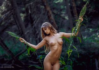 Girl and the forest