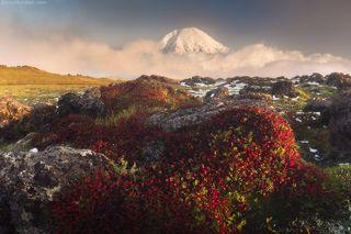 Где вулканы спят на облаках...