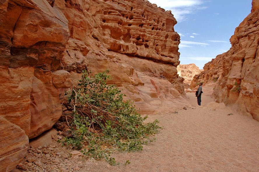 Египет, Цветной каньон, ВладимирКо