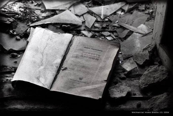 книги, запустение, пыль, Сборщик