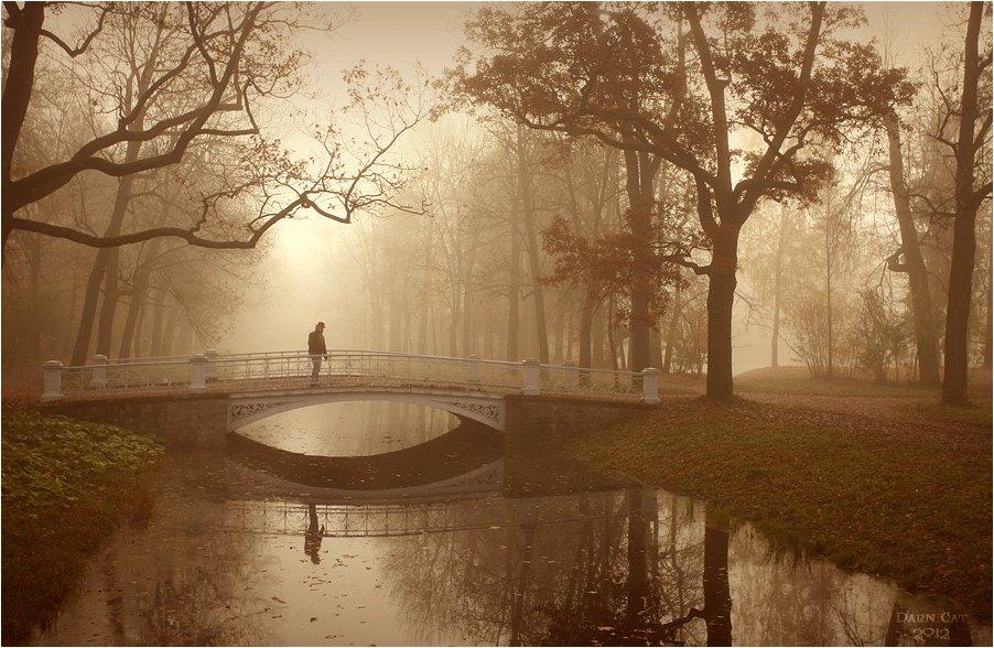 питер, парк, туман, прохожий, человек,  мост, Darn Cat