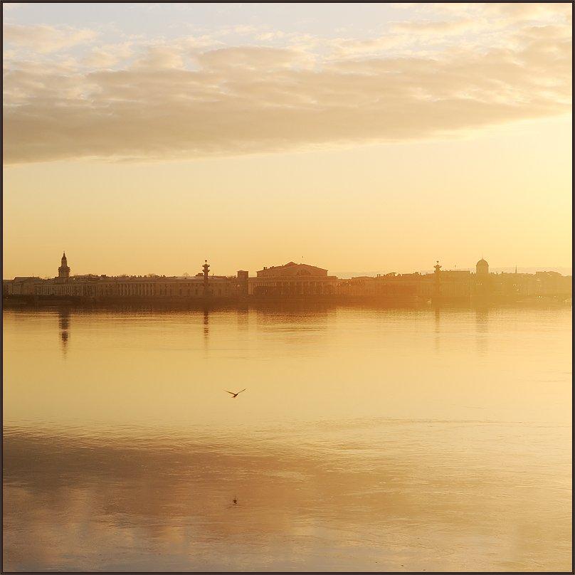 петербург, центр, нева, закат, квадрат, Kirill Shapovalov