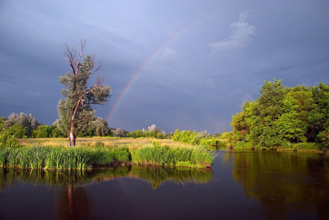 речка , дерево , радуга, sa56