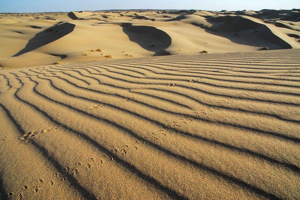 следы, на, песке, ВладимирКо
