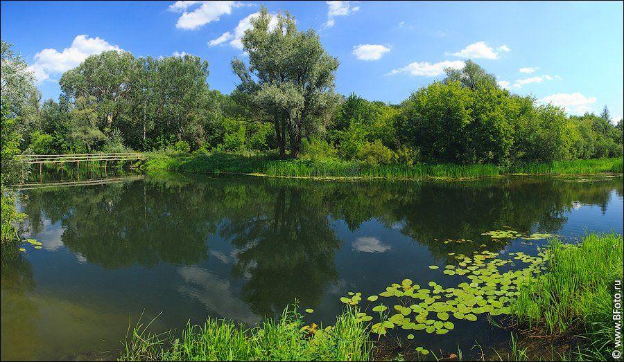 , фотограф Алексей Строганов www.BFoto.ru
