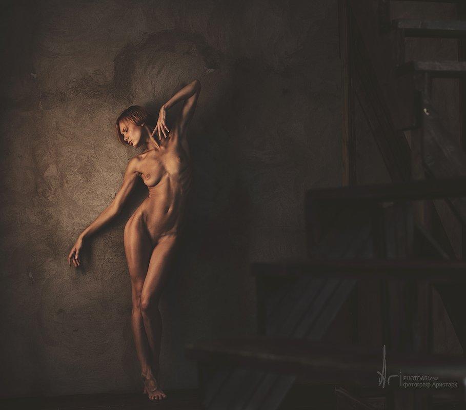 , фотограф Аристарх