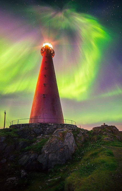andenes, aurora, borelis, northernlight, norway, Oleg Kuchorenko