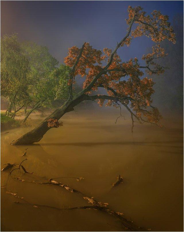 Осень, Река, Туман, SkorovS