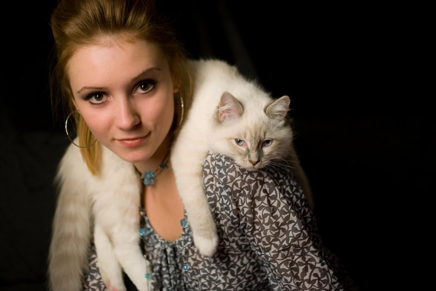 настя, портрет, женский, гламур, кот, рэгдолл, марти, Ginger