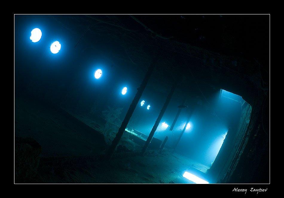 зайцев, подводное, фото, затонувший, корабль, красное, море, фотосафари, Алексей Зайцев