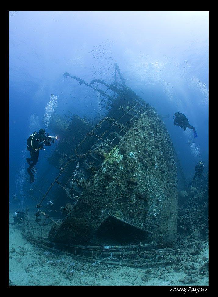 зайцев, подводное, фото, затонувший, корабль, красное, море, Алексей Зайцев