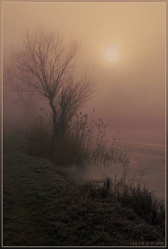 пейзаж, туман, утро, lad_i_mir, lad_i_mir