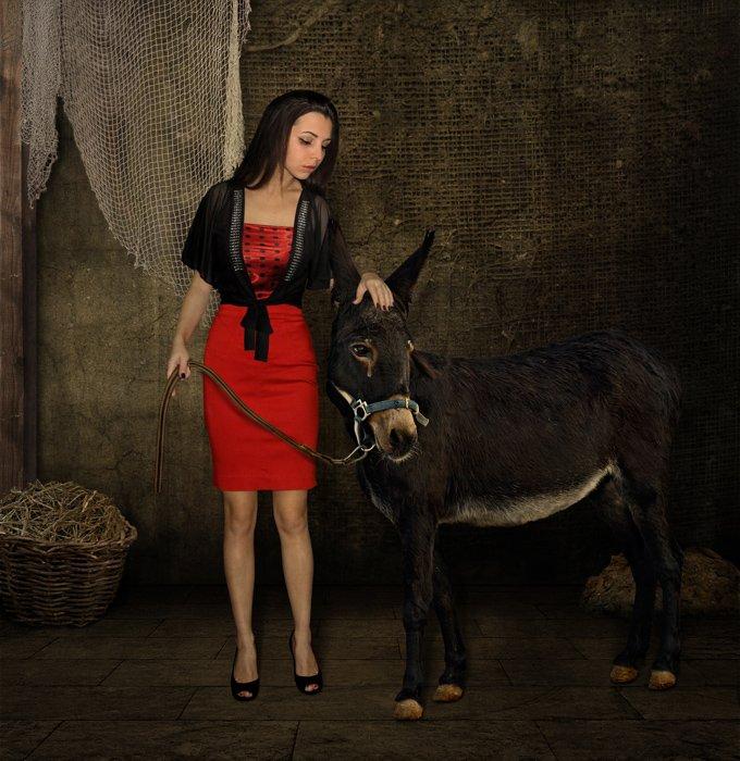 Ведьма, Иллюстрация, КИШ, Осёл, Iridi (Ирина Кузнецова)