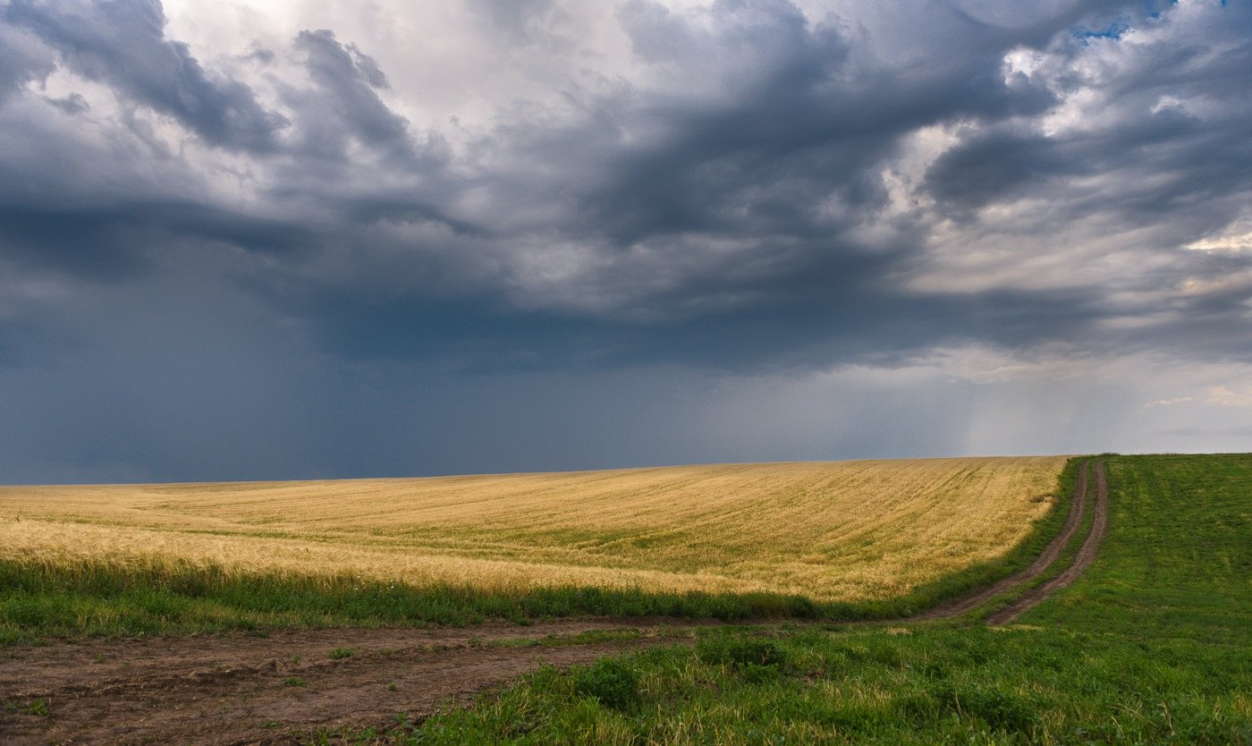 Дорога, Небо, Облака, Пейзаж, Поле, Природа, Andrey Zolotnitsyn