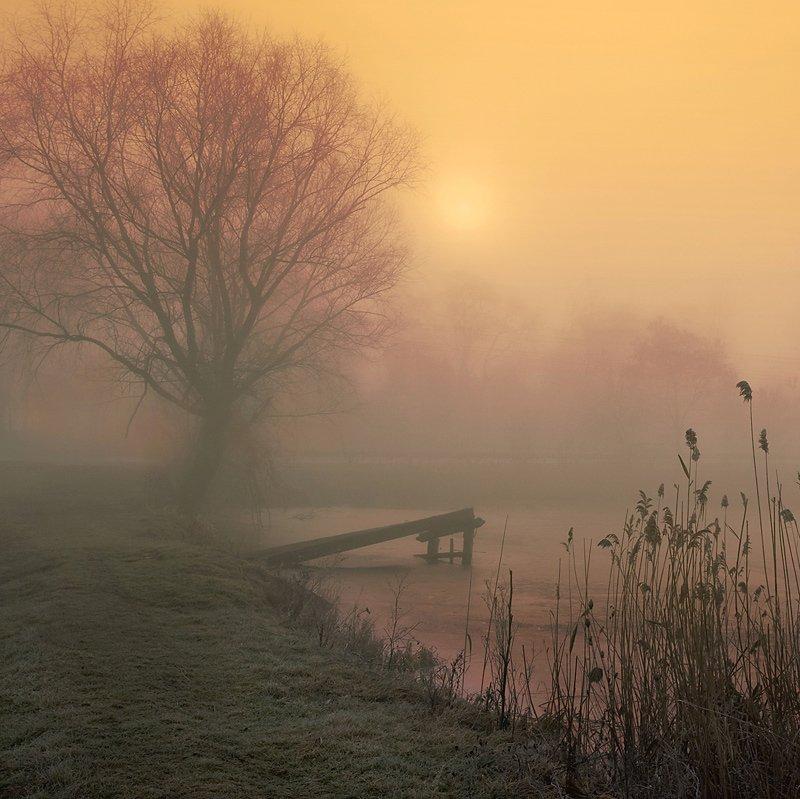 пейзаж, утро, туман, lad_i_mir, lad_i_mir