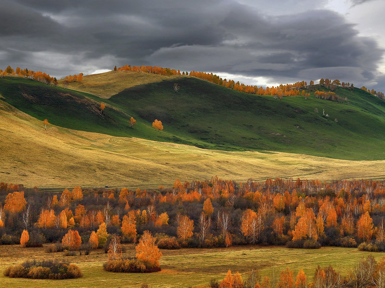 , Александр Сысуев