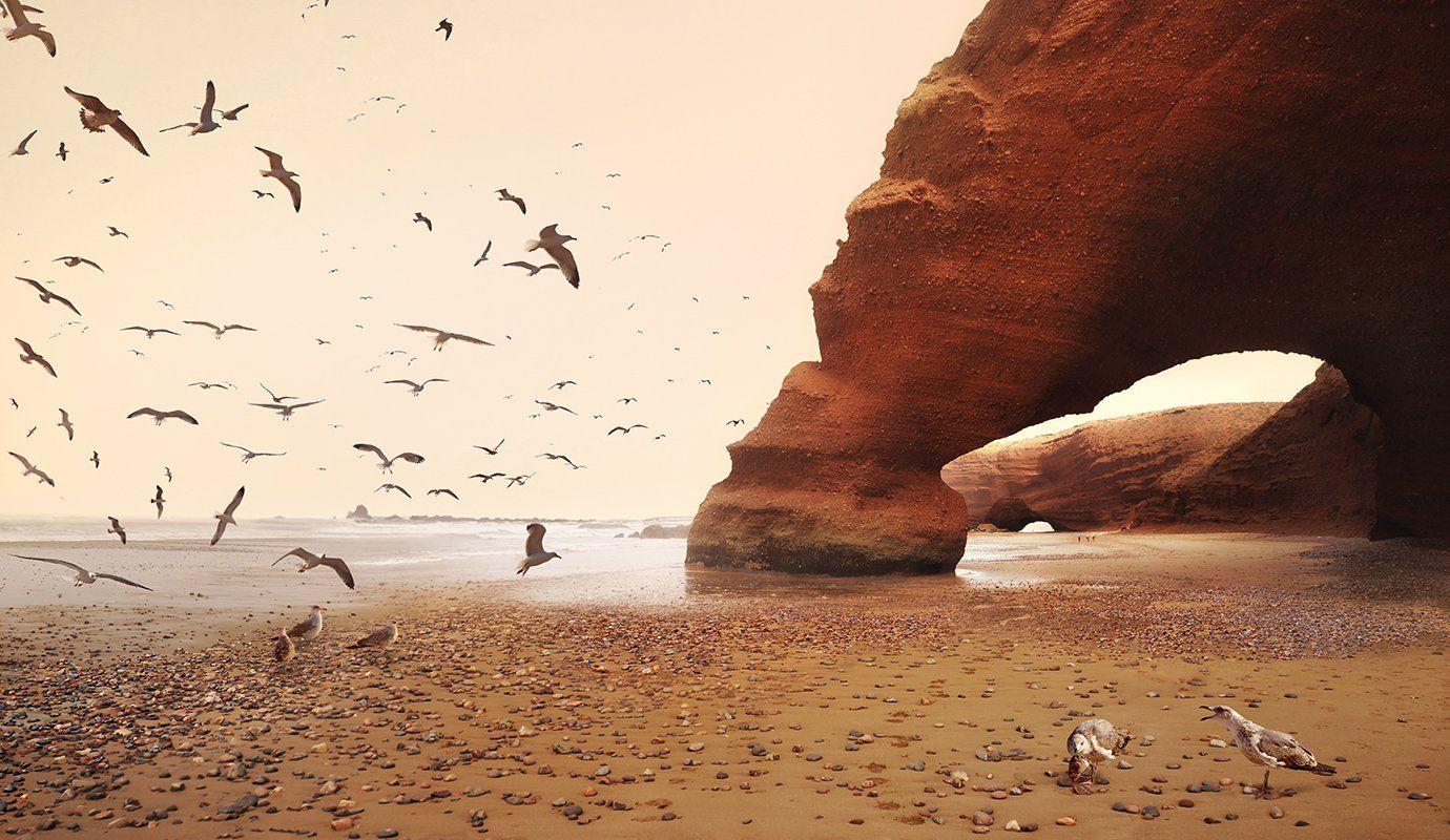marokko, legzira, beach, seagulls, Сергей Хромов