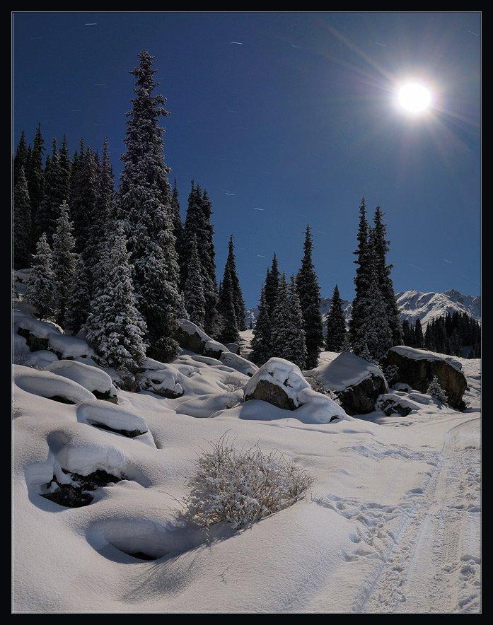 природа,горы,зима,снег,лес,елки,ночь,луна,дорога, Андрей Ухов