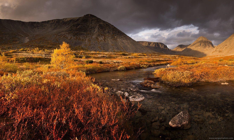 Autumn, Golden, Khibiny, Mountains, Горы, Кольский, Осень, Хибины, Сергей Малинин