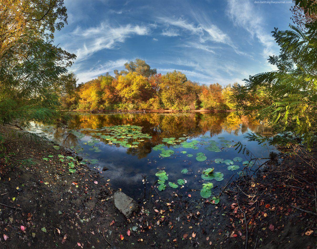 Лес, Облака, Озеро, Осень, Пейзаж, Украина, Денис Белицкий