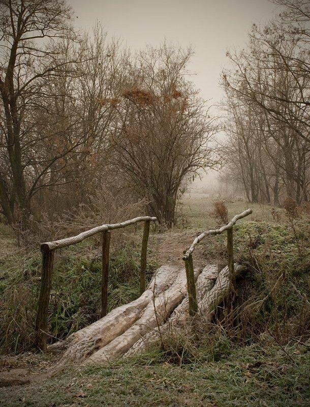 пейзаж, утро, осень, туман, изморозь, мостик, на ту сторону, lad_i_mir, lad_i_mir