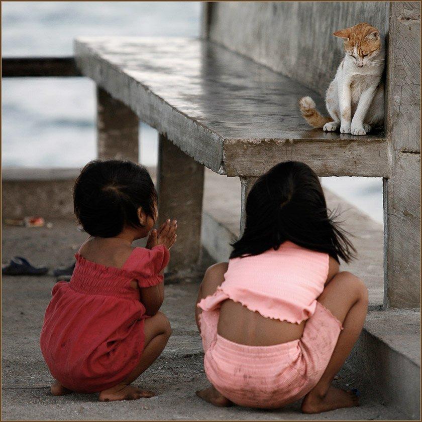 дети, девоча, кошка, гили, траванган, индонезия, Ханмурзин Павел