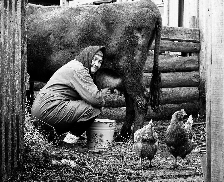 жизнь деревенская фото