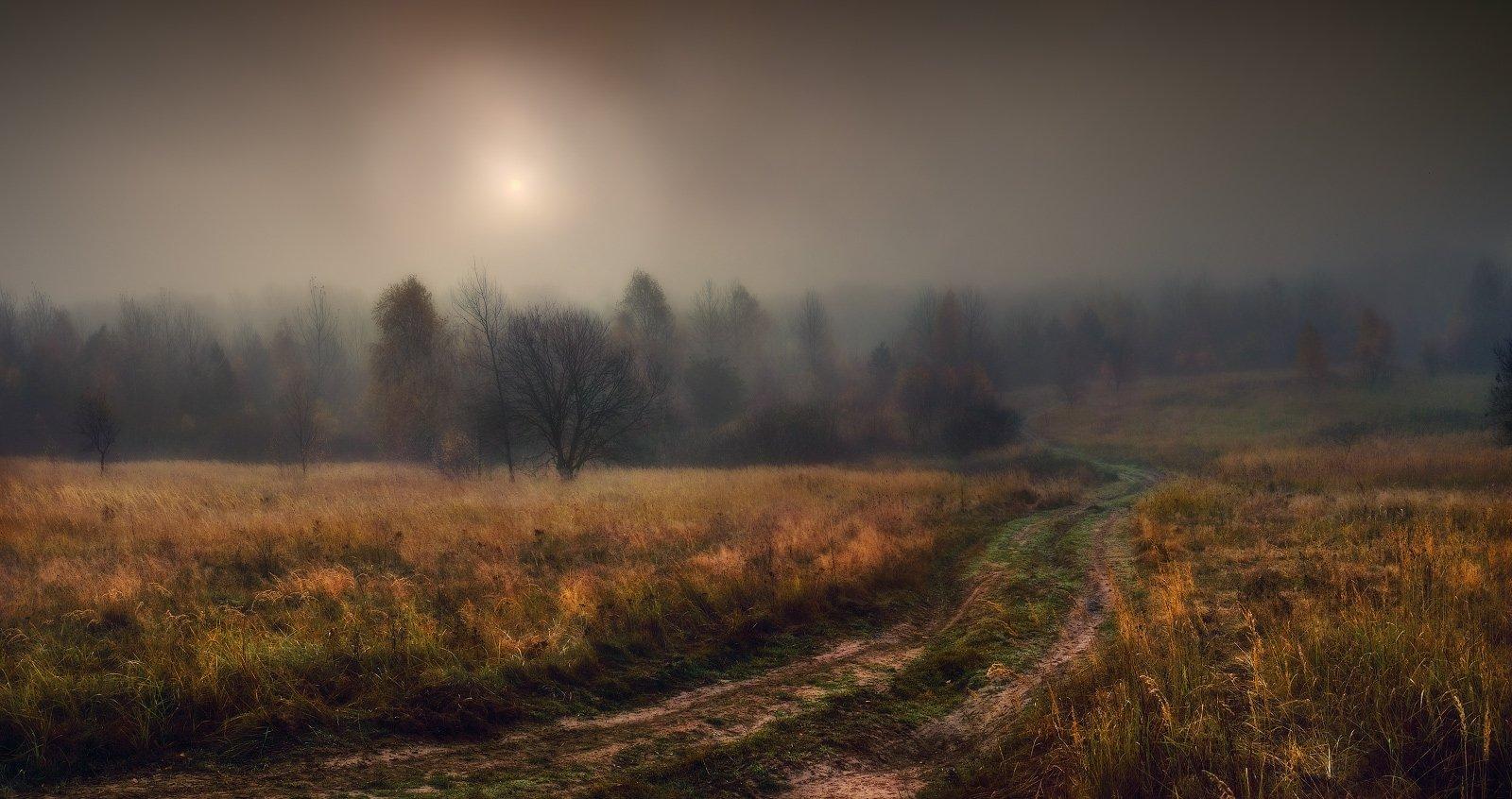 осень, туман, дорога, Владимир