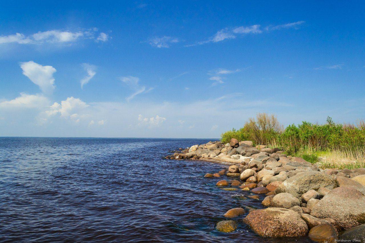 Чудское озеро пляжи фото
