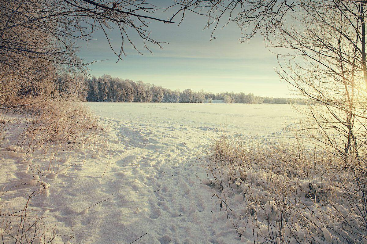 Dyadyavasya, Зима, Лес, Лёд, Мороз, Озеро, Пейзаж, Россия, След, Снег, Тропинка, Утро, Дмитрий dyadyavasya  Шамин