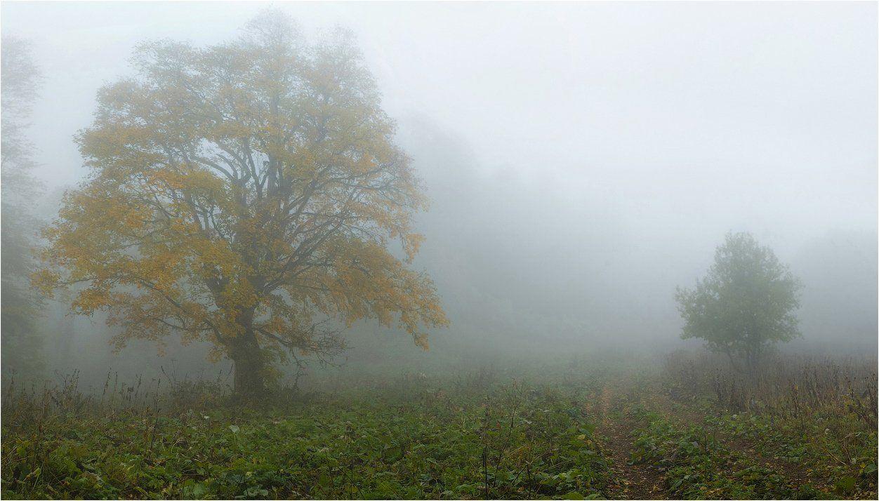 Осень, SergeySkorov