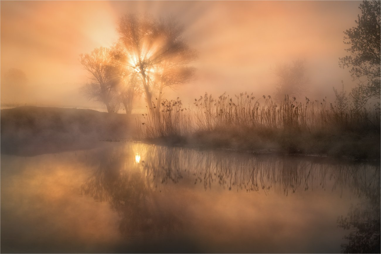 утро, пейзаж, лучи, туман, река, камыш, отражения, Александр Киценко