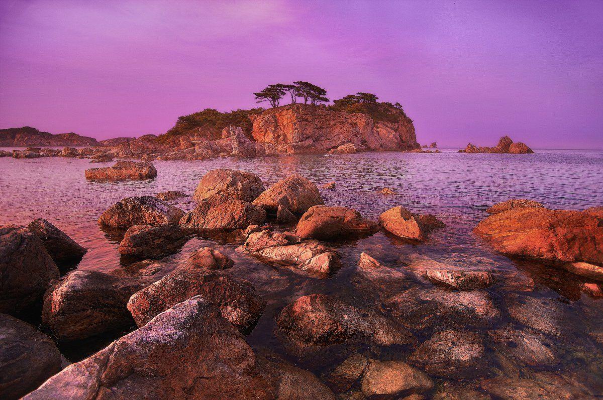 дальний восток, закат, камни, море, морские ежи, остров, полуостров гамов, японское море, Анна Аникина