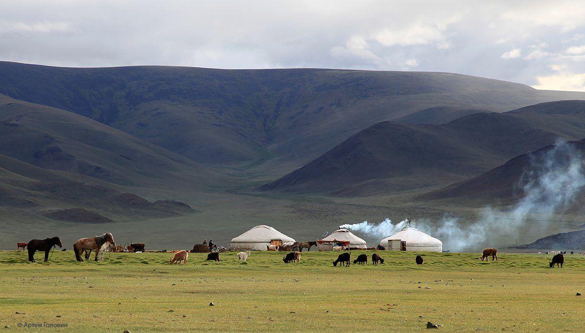 Монголия, Степь, Юрты, Артем Головин