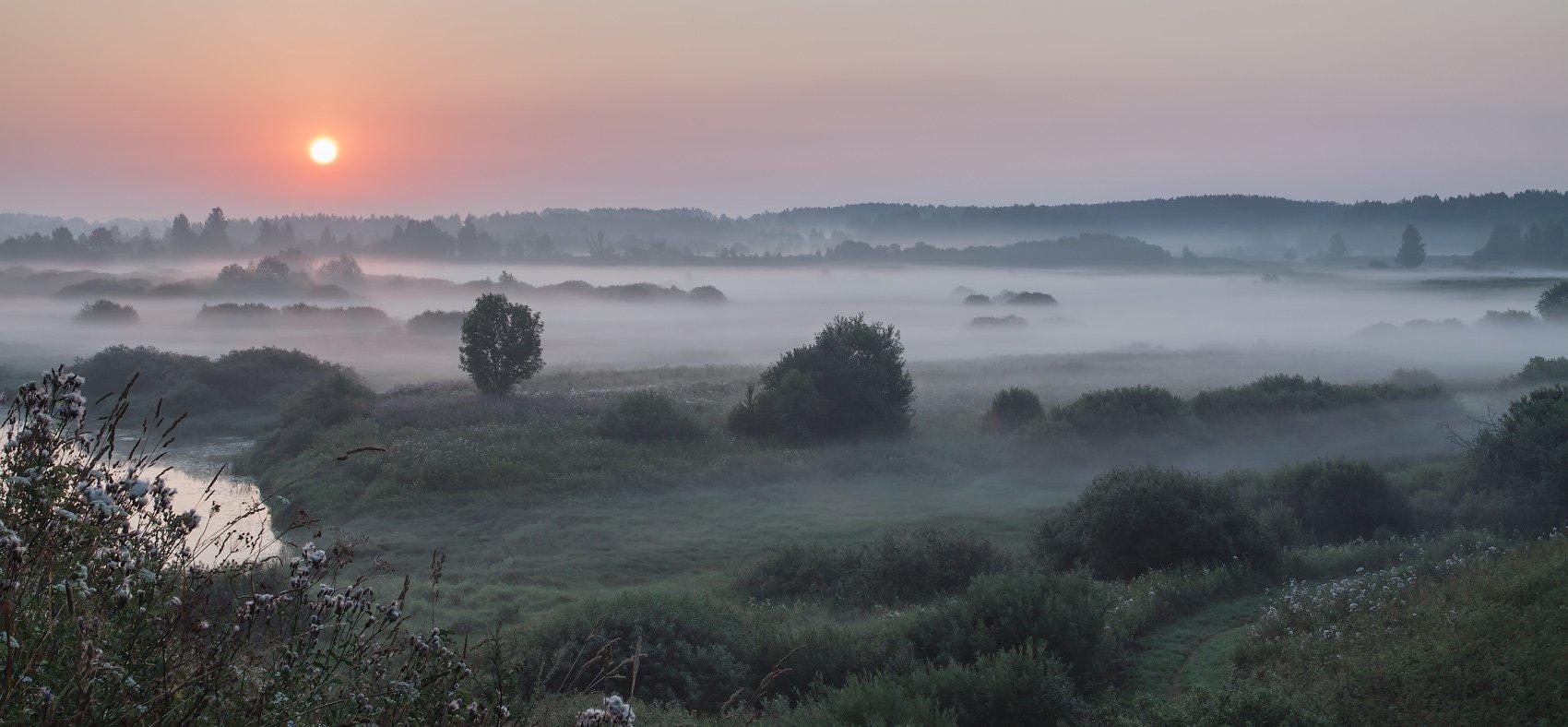 Тригорское. Пушкинские горы, Андрей Леонидович