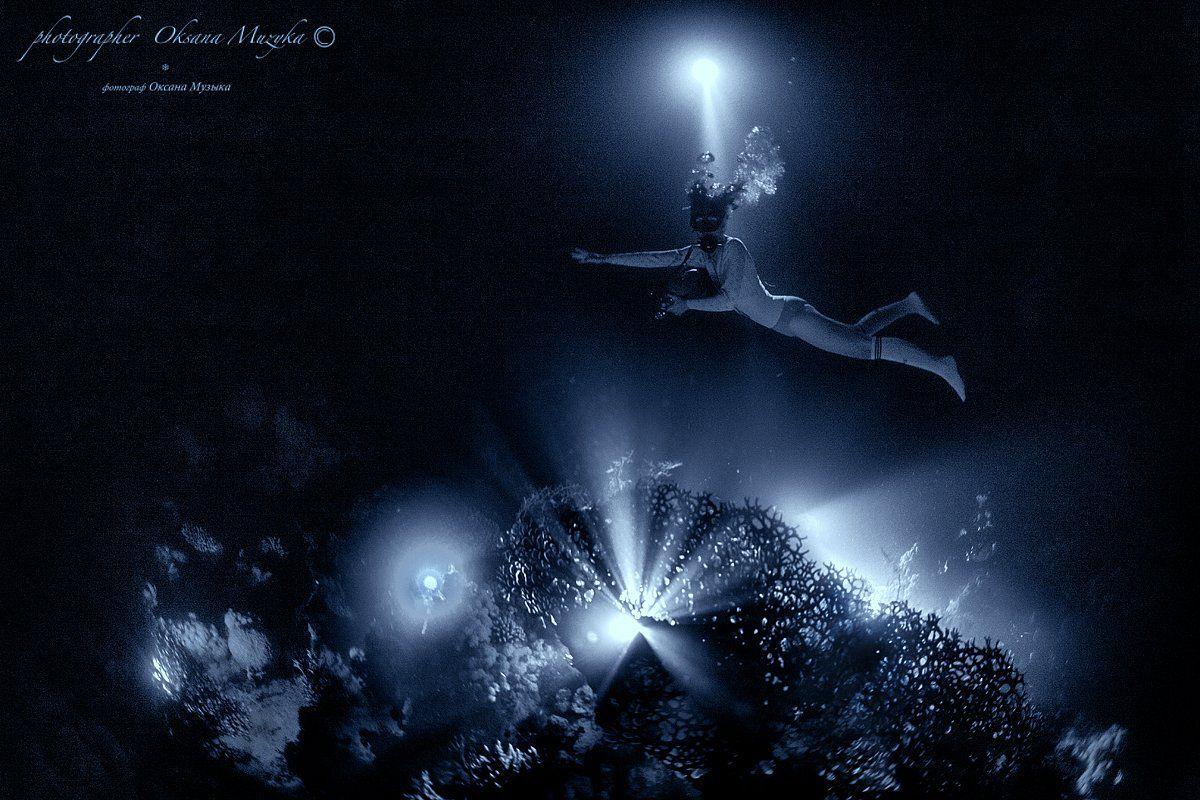 ночь, фонарь, коралл, Маргарита, море, вода, Оксана Музыка