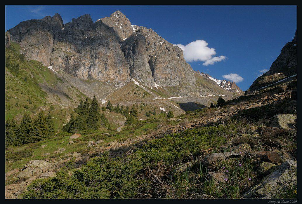 природа,горы,лето,ущелье,лес,цветы,скалы,деревья,трава,облака,река,елки, Андрей Ухов