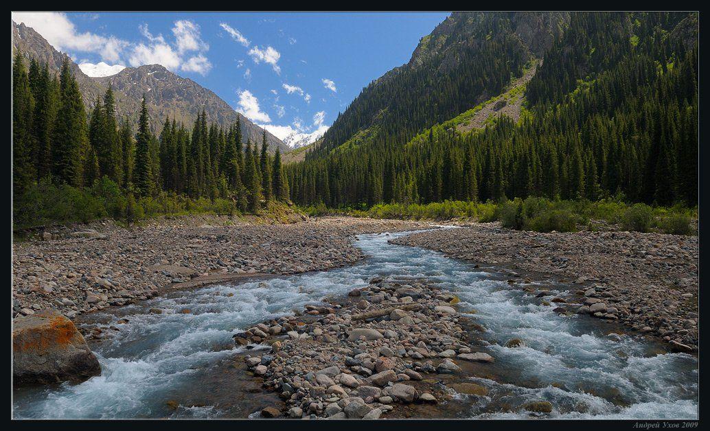 природа,горы,лето,ущелье,лес,скалы,деревья,трава,облака,река,елки,тень,вечер,ледники, Андрей Ухов