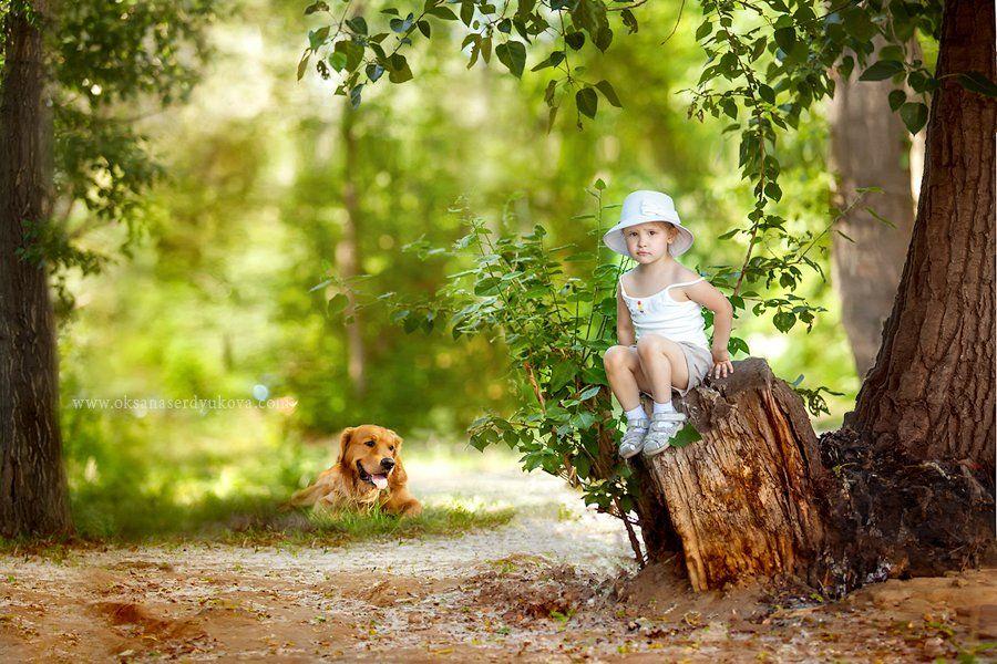 дети,семья,природа,прогулка,лес,солнце, Оксана