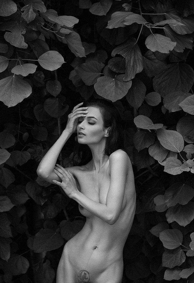 photo, girl, portrait, blackandwhite, nude, art, Елена Daedra Алферова