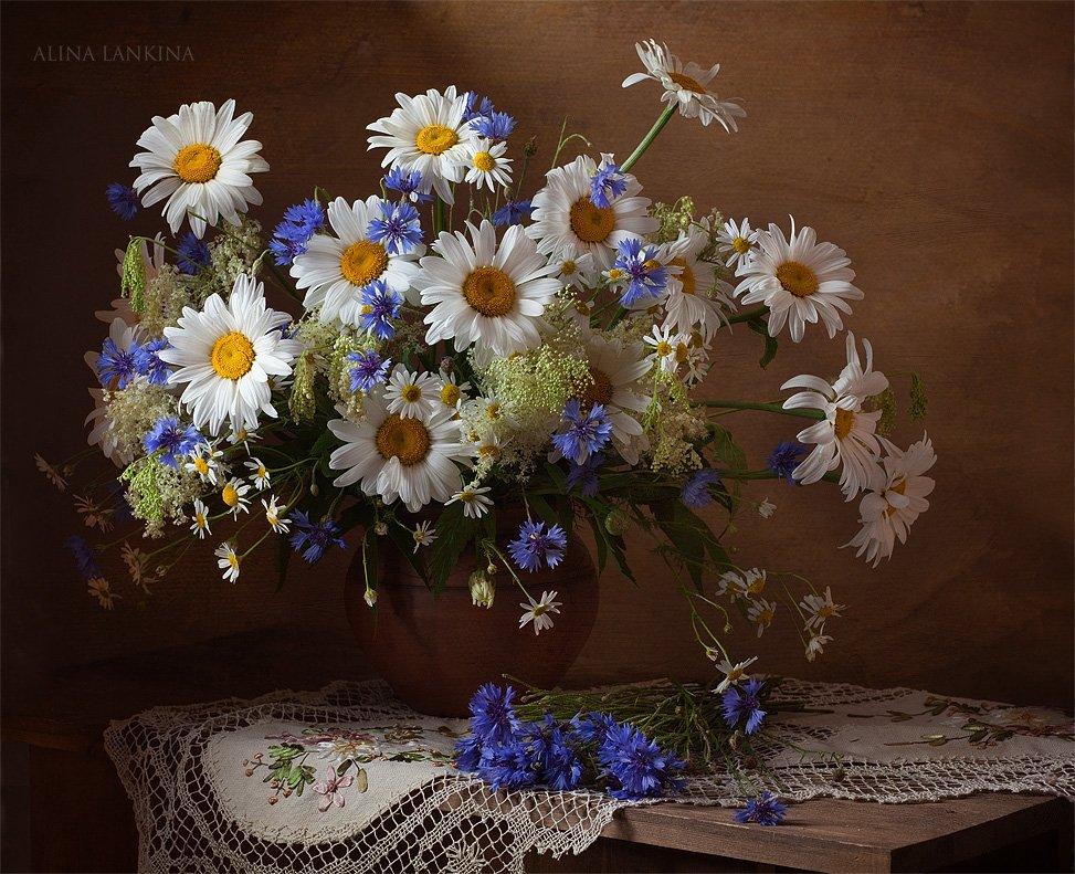 натюрморрт, фотонатюрморт, цветы, ромашки, васильки, букет, лето, салфетка, Alina Lankina