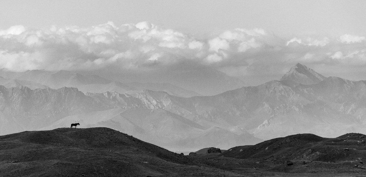 Ачик-Таш, пик Ленина, Киргизия, Памир, лошадь, горы, небо, облака, Иван Куликов