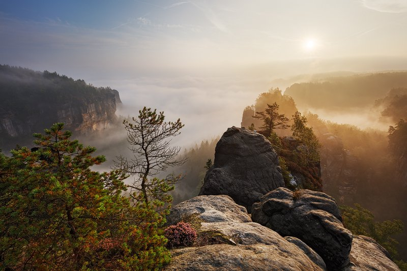 Fog, Germany, Light, Mist, Morning, Rocks, Sandstone, Saxon switzerland, Summer, Martin Rak