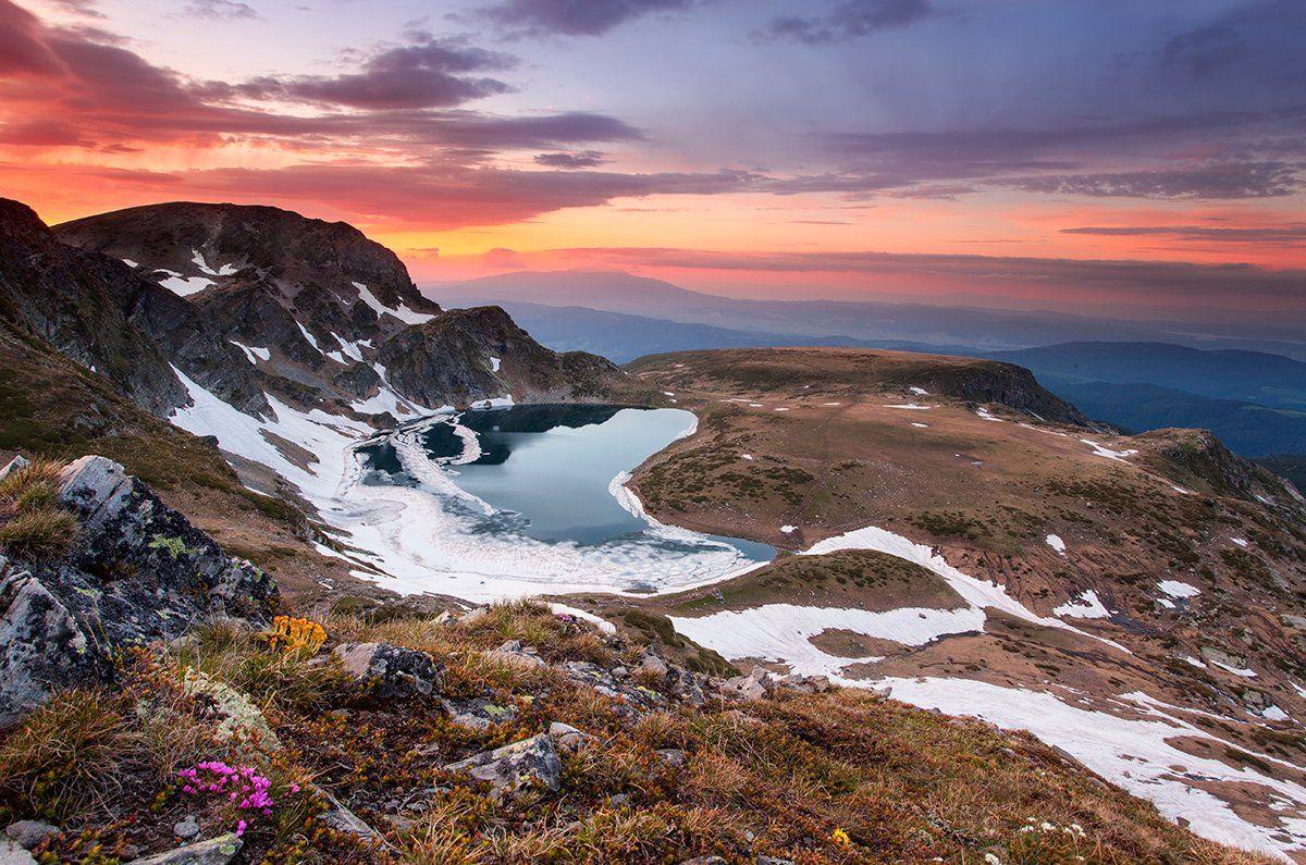 болгария, Павел Пронин
