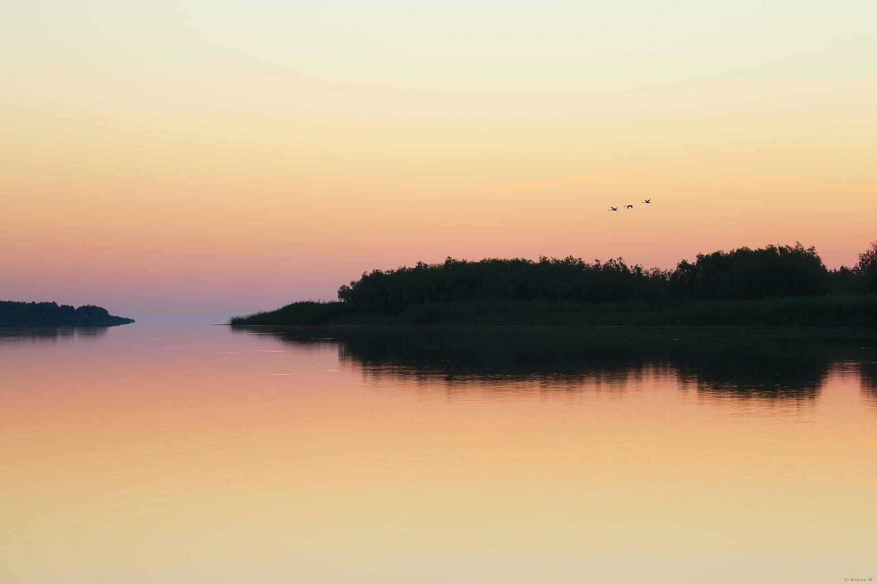 утро,река,Дунай,природа, Andrew Key