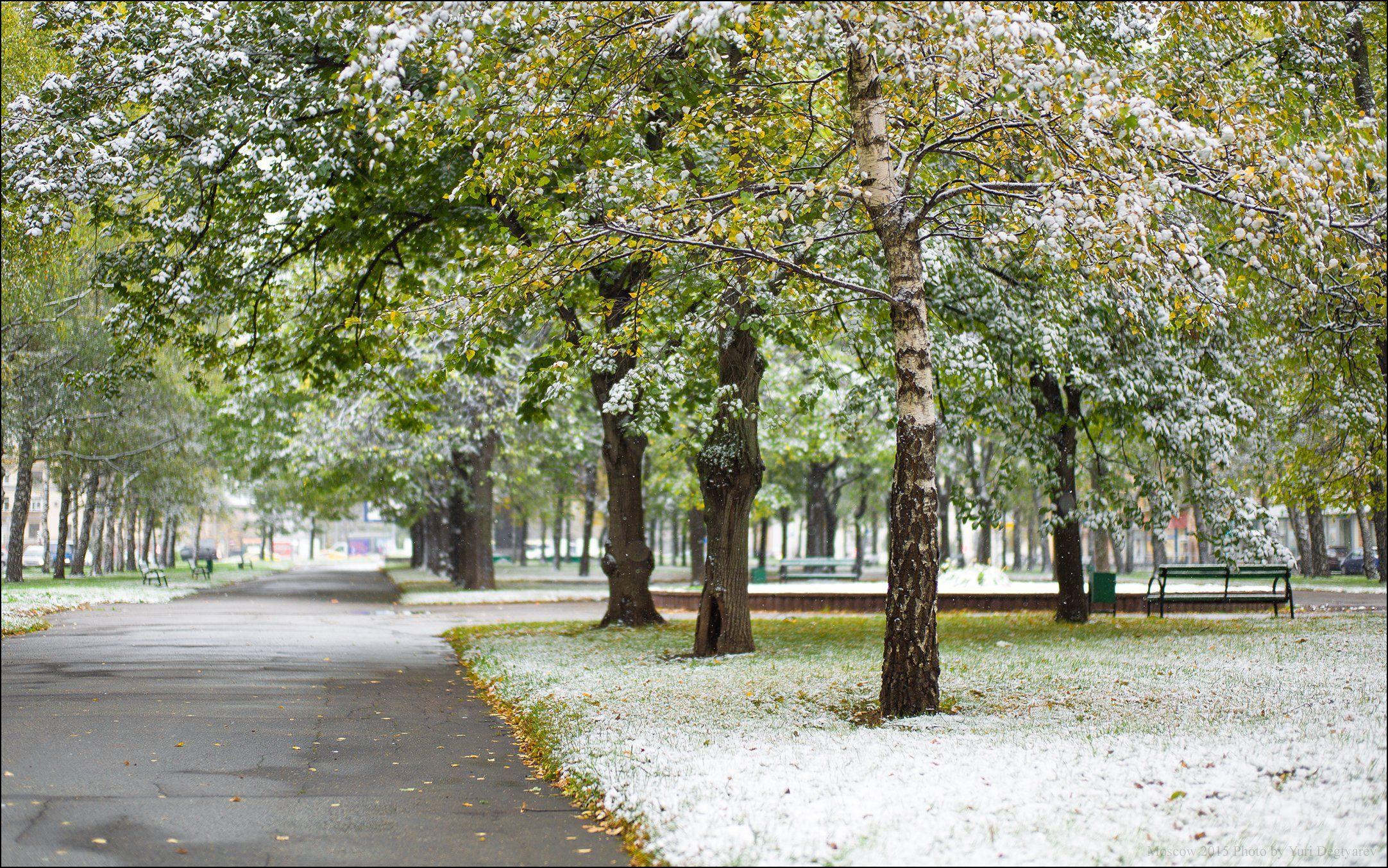 Город, Москва, Осень, Первый, Проспект, Россия, Снег, Университетский, Юрий Дегтярёв