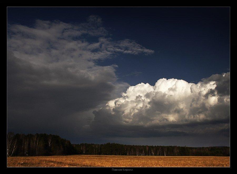 Дождь, поле, осень, Павлов Кирилл