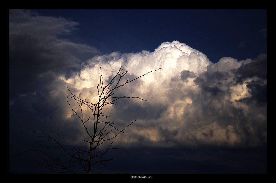 земля, небо, Павлов Кирилл