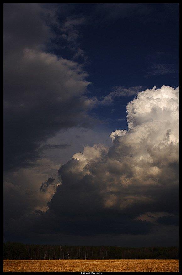 дождь, поле, весна, Павлов Кирилл